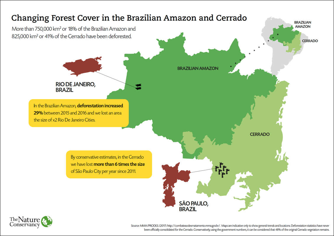 This map shows the amount of deforestation in the Brazilian Amazon and Cerrado, with comparative Brazilian city estimates.