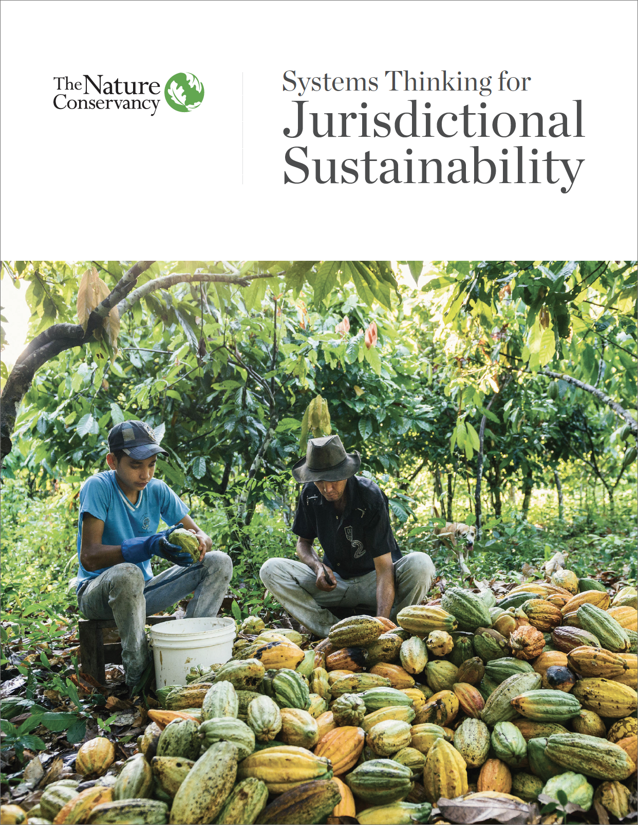 Systems Thinking for Jurisdictional Sustainability