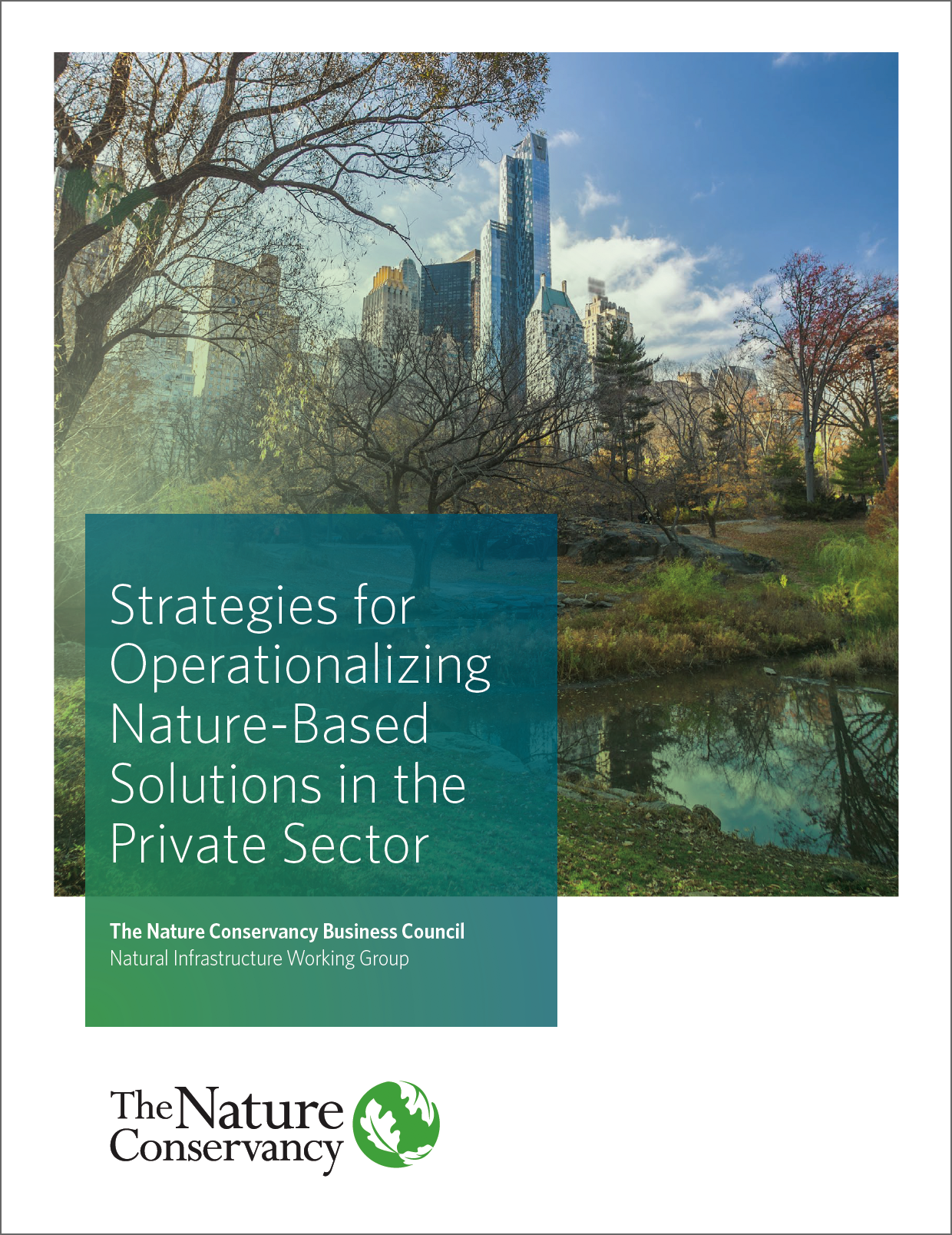 NBS in the Private Sector Report Cover